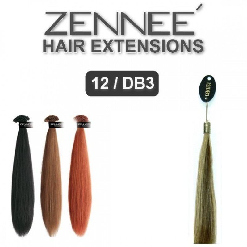 Hair Extensions 50cm Color 12/DB3
